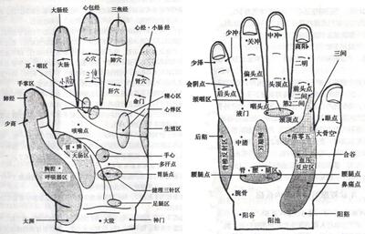 厕所门人体_2,悸动气喘: 方法:手掌中央心包区,中指中冲,小指少冲,手腕神门穴