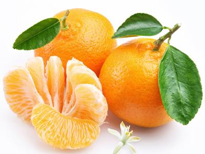 橘子素描教程步骤图解